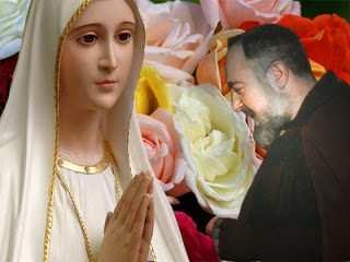 Madonna di Fatima sfondo rosa e Padre Pio