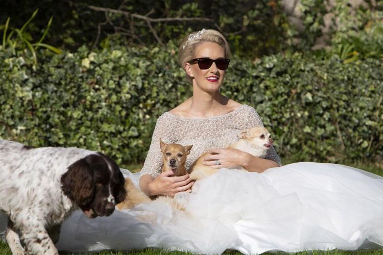 Nozze speciali, gli sposi accompagnati da 8 cani disabili abbandonati