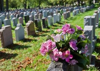 torino cimitero animali domestici