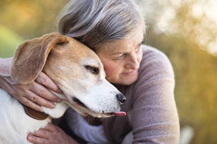 Il segno zodiacale svela quale cane è perfetto per te