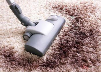 Acari della polvere: rimedi per le allergie in casa
