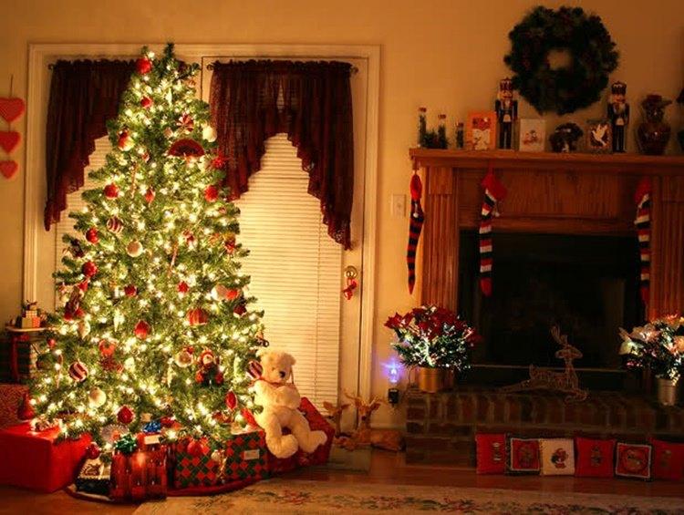 Le origini dell'Albero di Natale, tra curiosità e leggende