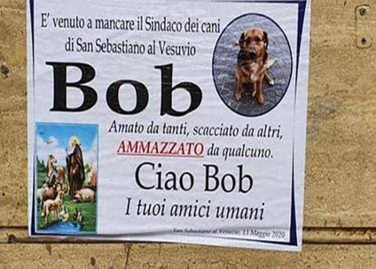 addio-bob-cane