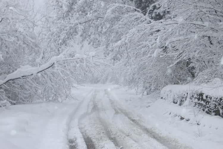 inverno in azione