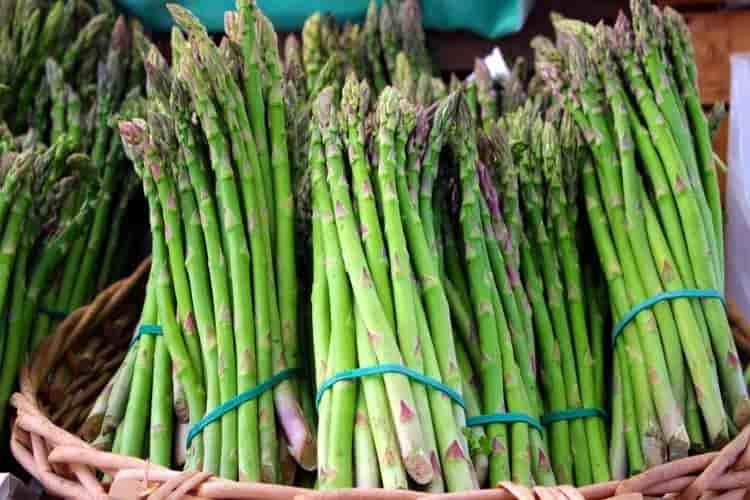 asparagi e cellulite