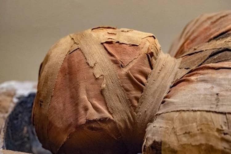 Primo caso di mummia incinta al mondo