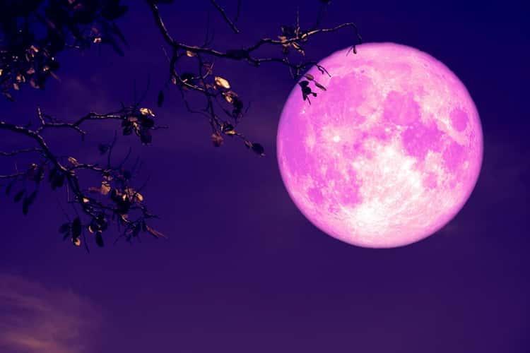 Luna delle Fragole